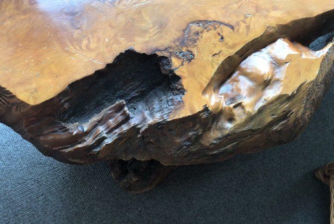 Couchtisch Redwood-Wurzel